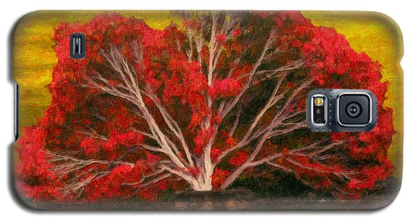 Red Thai Tree Galaxy S5 Case by Rob Tullis