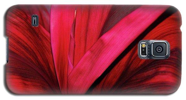 Red Ti Leaf Plant - Hawaii Galaxy S5 Case