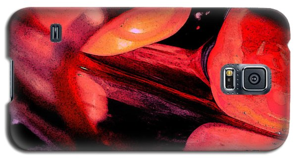 Red Tomatoe Two Galaxy S5 Case