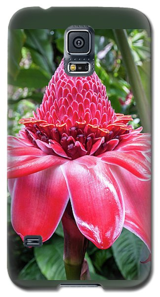 Red Torch Ginger Flower Galaxy S5 Case