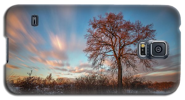 Galaxy S5 Case featuring the photograph Red Tree by Davorin Mance