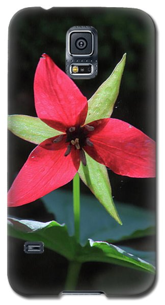 Red Trillium Wildflower Galaxy S5 Case by John Burk