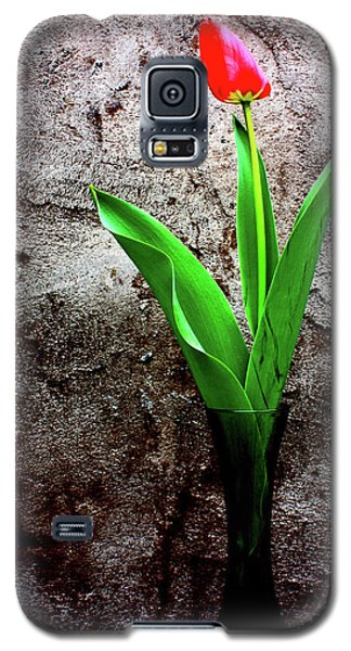 Galaxy S5 Case featuring the photograph Red Tulip by Gray  Artus