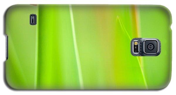 Red Tulip Galaxy S5 Case by Silke Magino