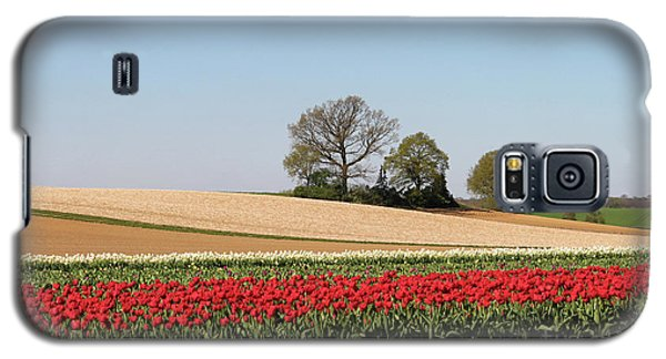 Red Tulips Landscape Galaxy S5 Case