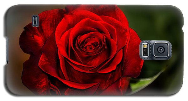 Galaxy S5 Case featuring the photograph Red Velvet by Brenda Bostic