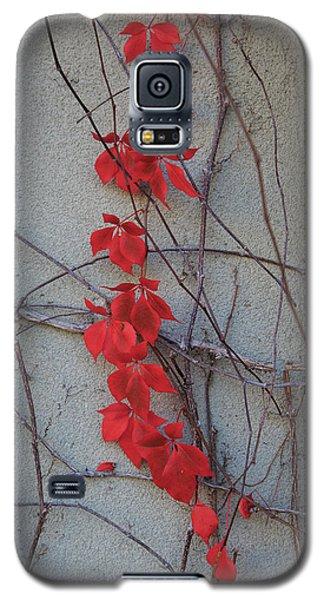 Red Vines Galaxy S5 Case