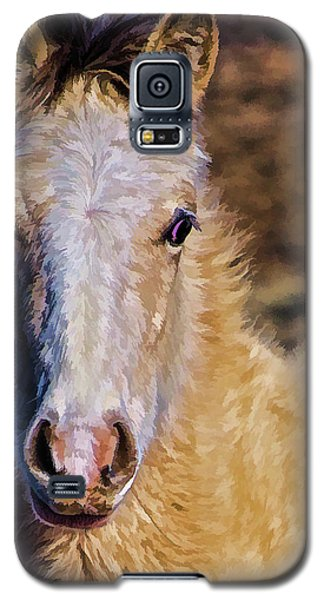 Red Willow Pony Galaxy S5 Case