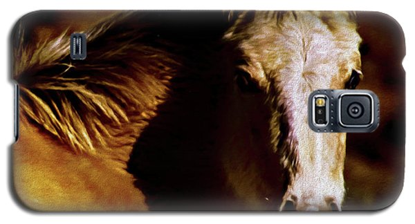 Red Willow Pony Lx Galaxy S5 Case