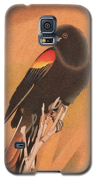 Red-winged Blackbird 3 Galaxy S5 Case