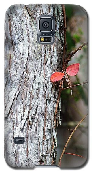 Red Winged Dragonfly Galaxy S5 Case