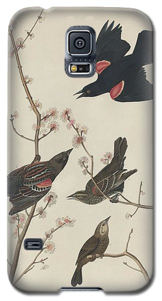 Red-winged Starling Galaxy S5 Case