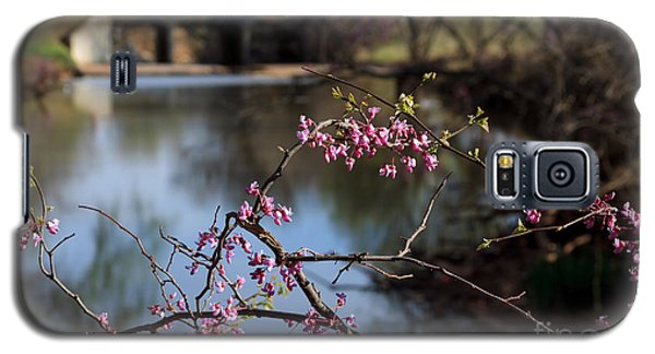 Redbuds And An Old Bridge Galaxy S5 Case