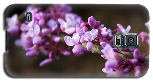 Galaxy S5 Case featuring the photograph Redbuds In March by Jeff Severson