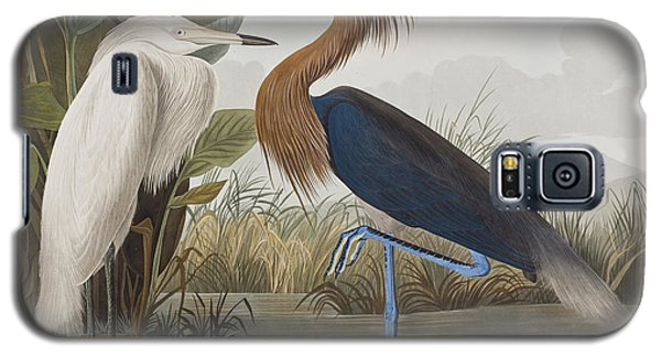 Egret Galaxy S5 Case - Reddish Egret by John James Audubon