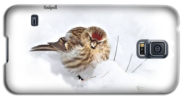 Redpoll Galaxy S5 Case