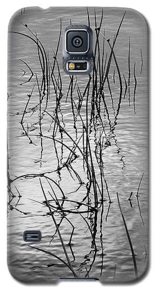 Reeds Galaxy S5 Case by Art Shimamura