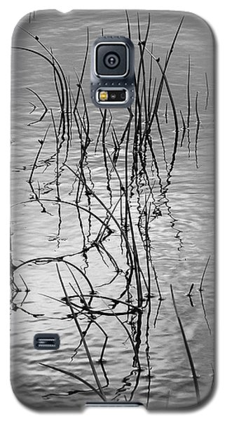 Reeds Galaxy S5 Case