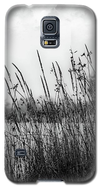 Reeds Of Black Galaxy S5 Case