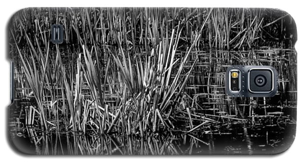 Reeds Reflection  Galaxy S5 Case