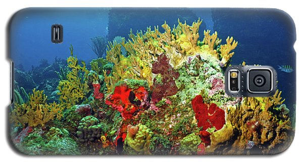 Reef Scene With Divers Bubbles Galaxy S5 Case