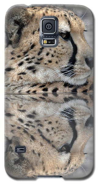 Reflected Cheetah Galaxy S5 Case