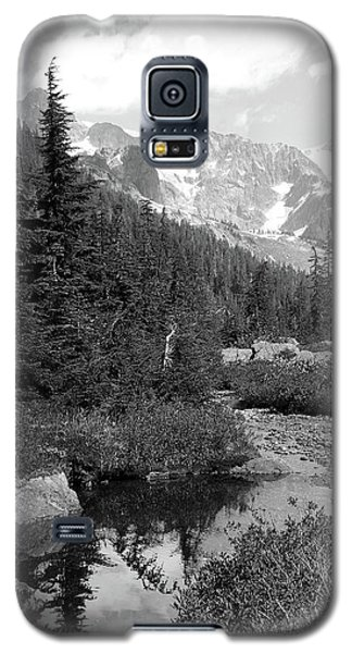 Reflected Pine Galaxy S5 Case