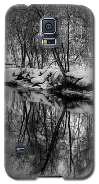 Reflected Trees Galaxy S5 Case