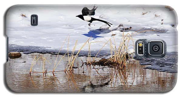 Reflecting Magpie Galaxy S5 Case