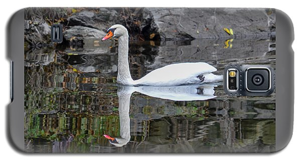 Reflecting Mute Swan Galaxy S5 Case
