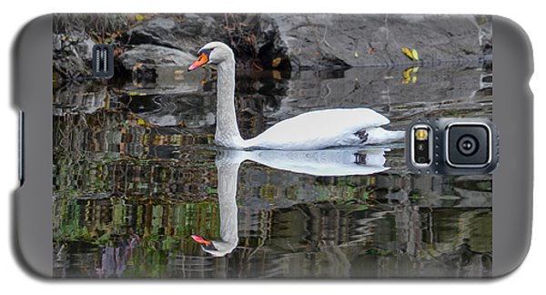 Reflecting Mute Swan Galaxy S5 Case