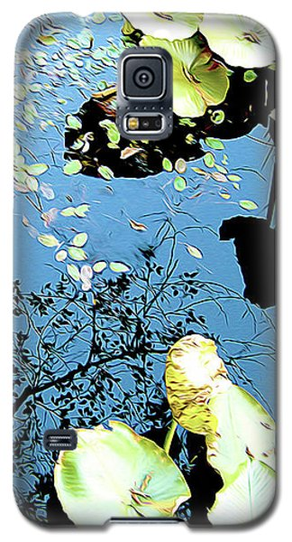 Reflecting Pond Galaxy S5 Case