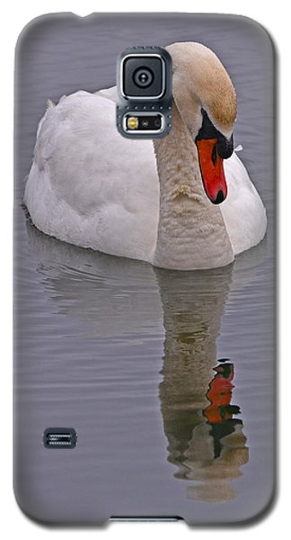 Reflecting Swan Galaxy S5 Case