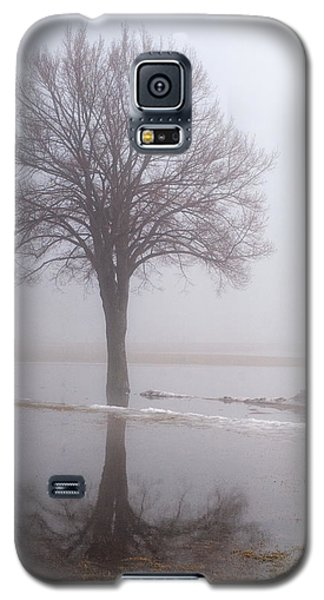 Reflecting Tree Galaxy S5 Case