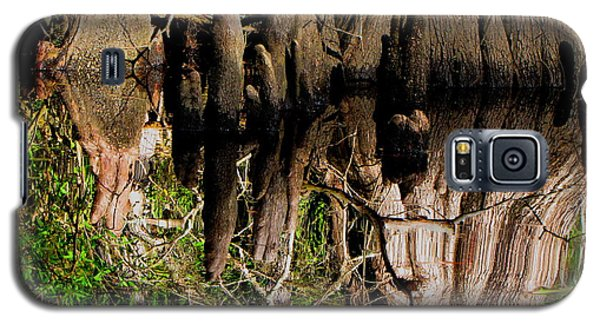 Galaxy S5 Case featuring the photograph Reflection Of Cypress Knees by Barbara Bowen