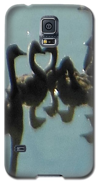Reflection Of Geese Galaxy S5 Case