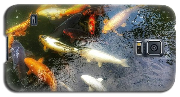 Reflections And Fish 5 Galaxy S5 Case