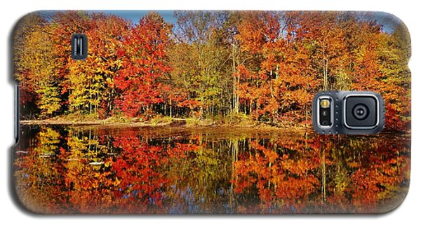 Reflections In Autumn Galaxy S5 Case by Ed Sweeney