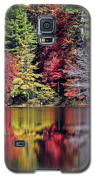 Reflections Of A Bare Tree Galaxy S5 Case