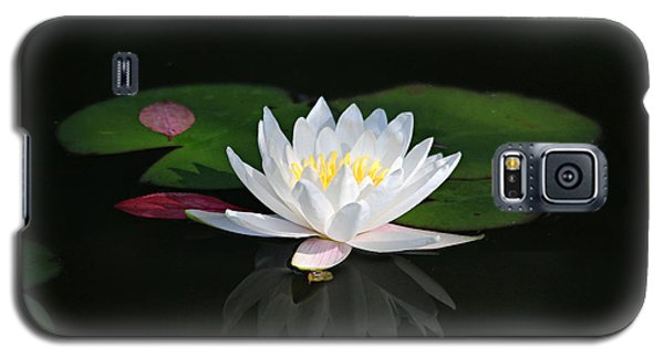 Reflections Of A Water Lily Galaxy S5 Case