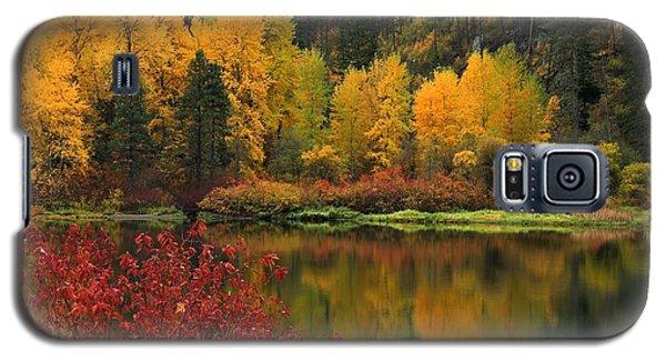Reflections Of Fall Beauty Galaxy S5 Case by Lynn Hopwood