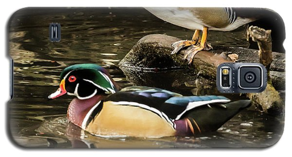 Reflections Of You And Me Wildlife Art By Kaylyn Franks Galaxy S5 Case