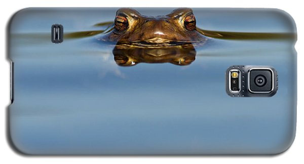 Reflections - Toad In A Lake Galaxy S5 Case by Roeselien Raimond