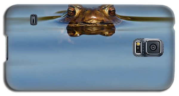 Reflections - Toad In A Lake Galaxy S5 Case
