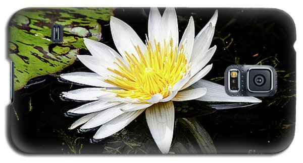 Reflective Lily Galaxy S5 Case