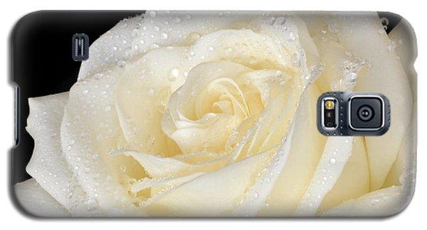 Refreshing Ivory Rose Galaxy S5 Case