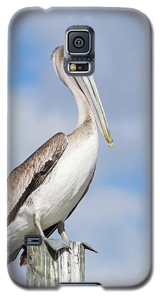 Regal Bird Galaxy S5 Case