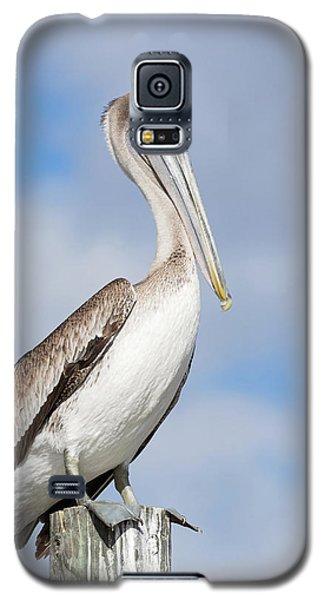 Regal Bird Galaxy S5 Case