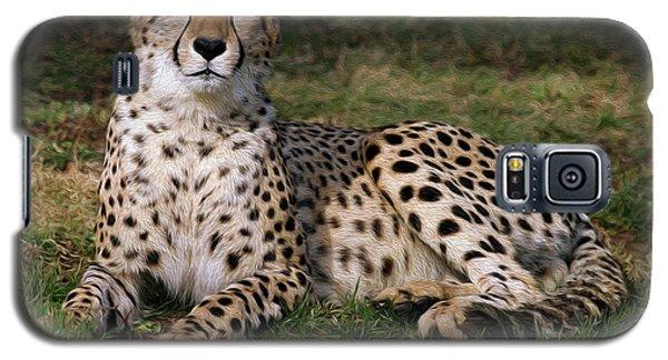 Regal Pose Galaxy S5 Case