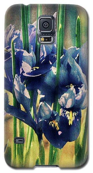 Galaxy S5 Case featuring the photograph Regal Splendour  by Connie Handscomb